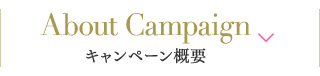 About Campaign キャンペーン概要
